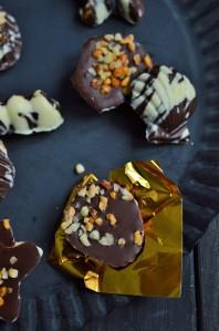 Nuss-Frucht-Schokoladen Pralinen