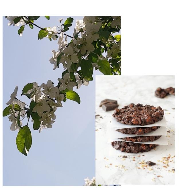 92bbfd3942d4f Riesen Superfood Cookies mit Schokolade (für ca. 15 Cookies)